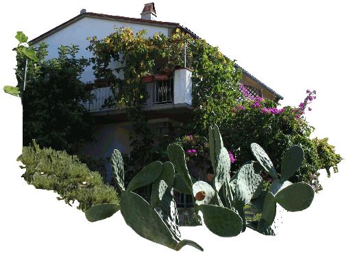 das Haus in Pomonte